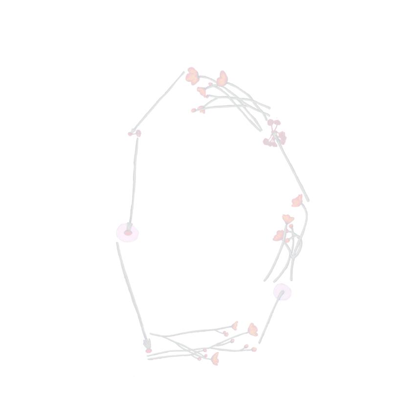 verjaardag-happybirthday3-KK 3