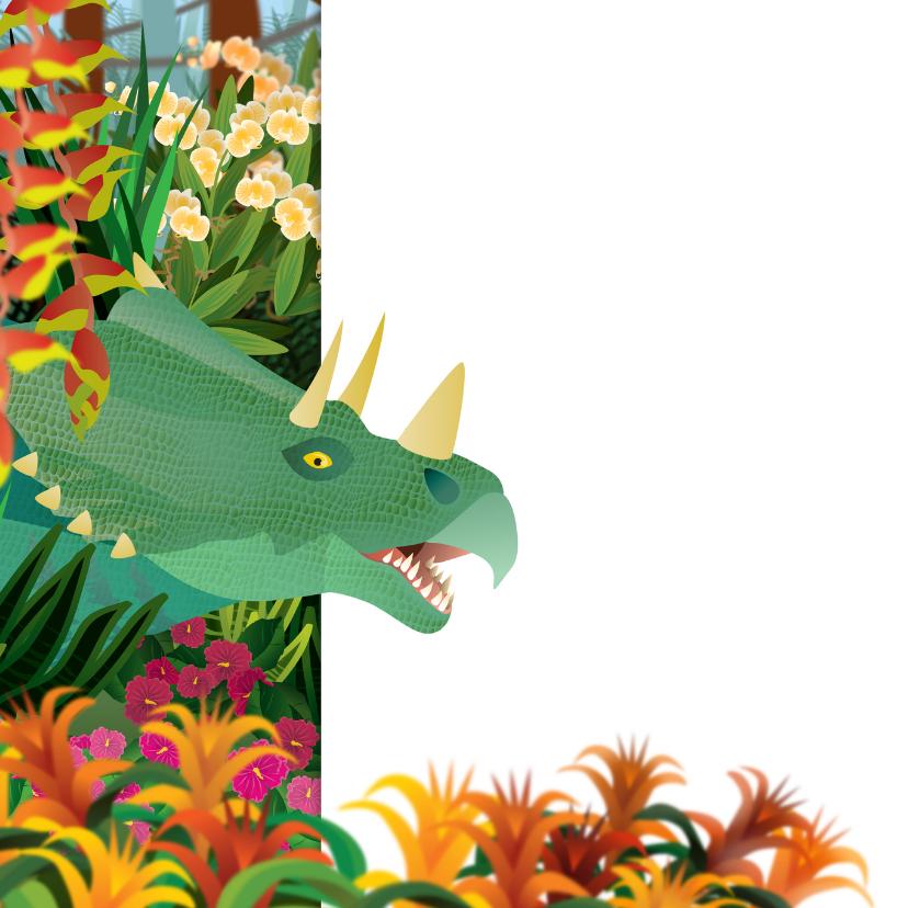 Verjaardag kinderkaart dinosaurus jongenskaart 2