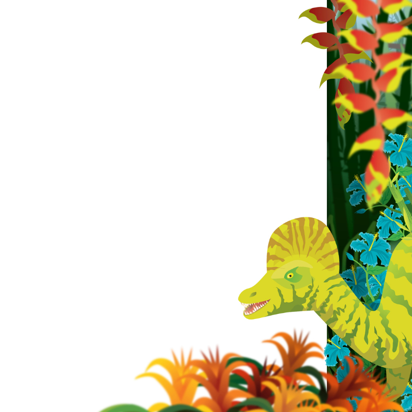 Verjaardag kinderkaart dinosaurus jongenskaart 3