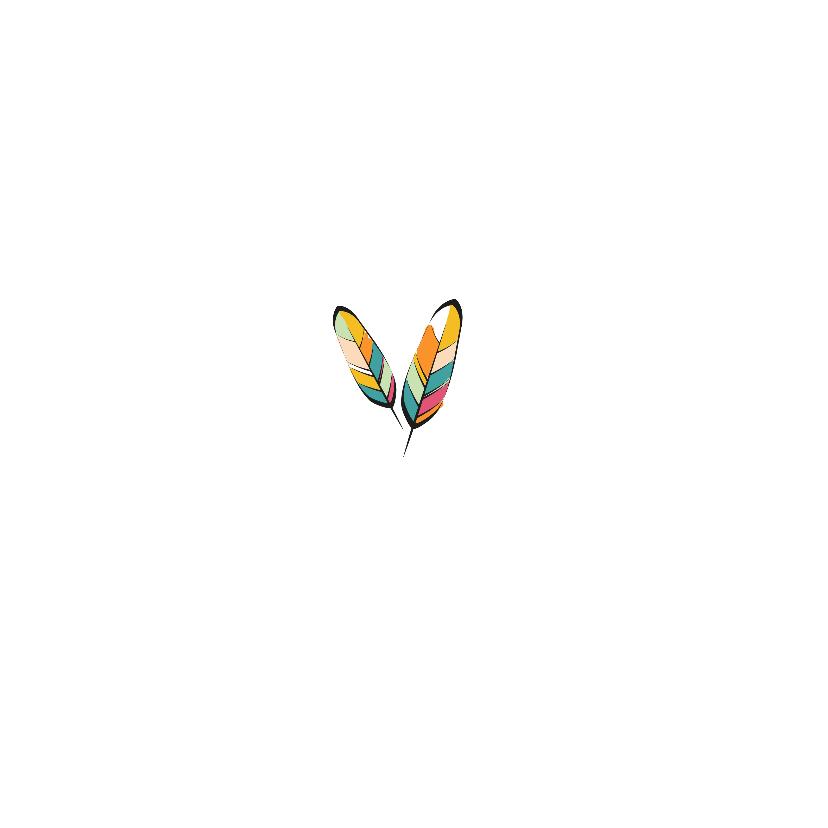 Verjaardag kleurrijke veren - SV 2