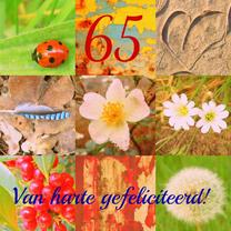 Verjaardagskaarten - Verjaardag natuurmens  IW