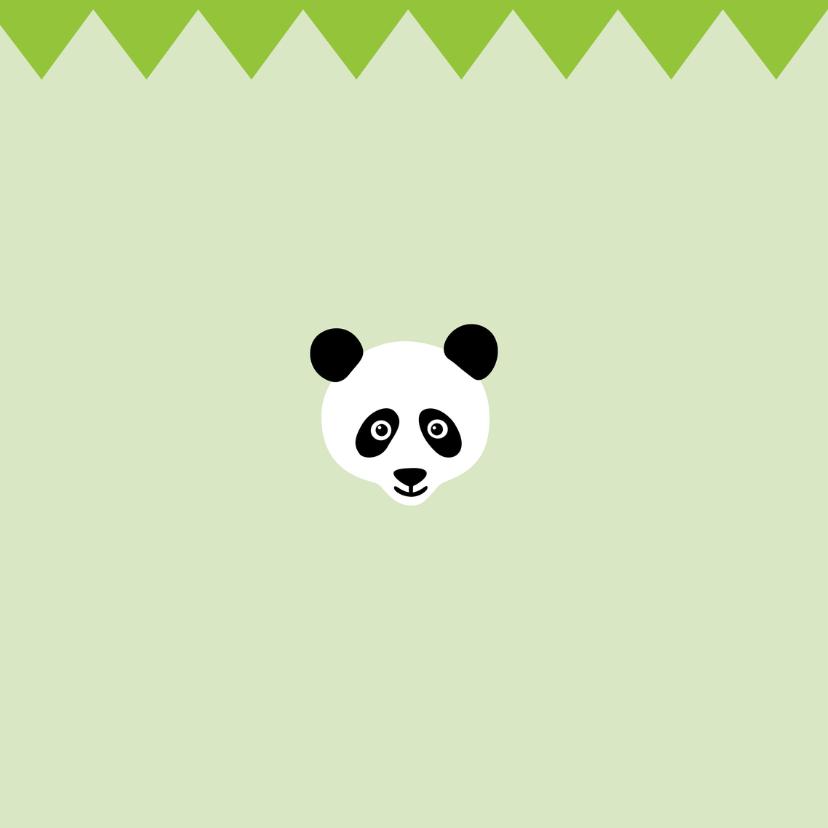 Verjaardag-Pandabeer is Jarig-HK 2