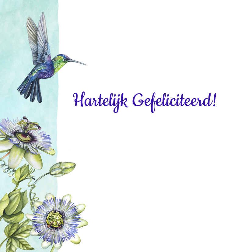 Verjaardag passiebloem hummingbird 2