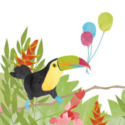 Verjaardag toekan en kikker 2
