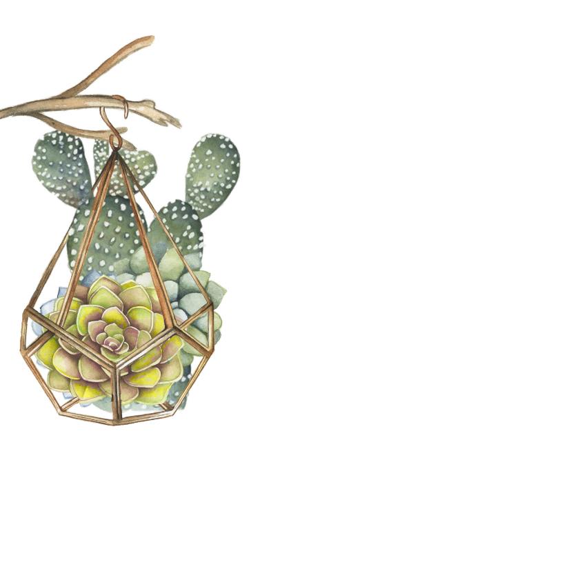 Verjaardag vetplant cactus groen 2