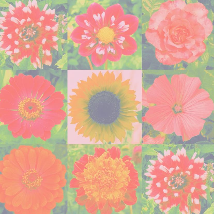 Verjaardag vrolijke bloemen IW  2