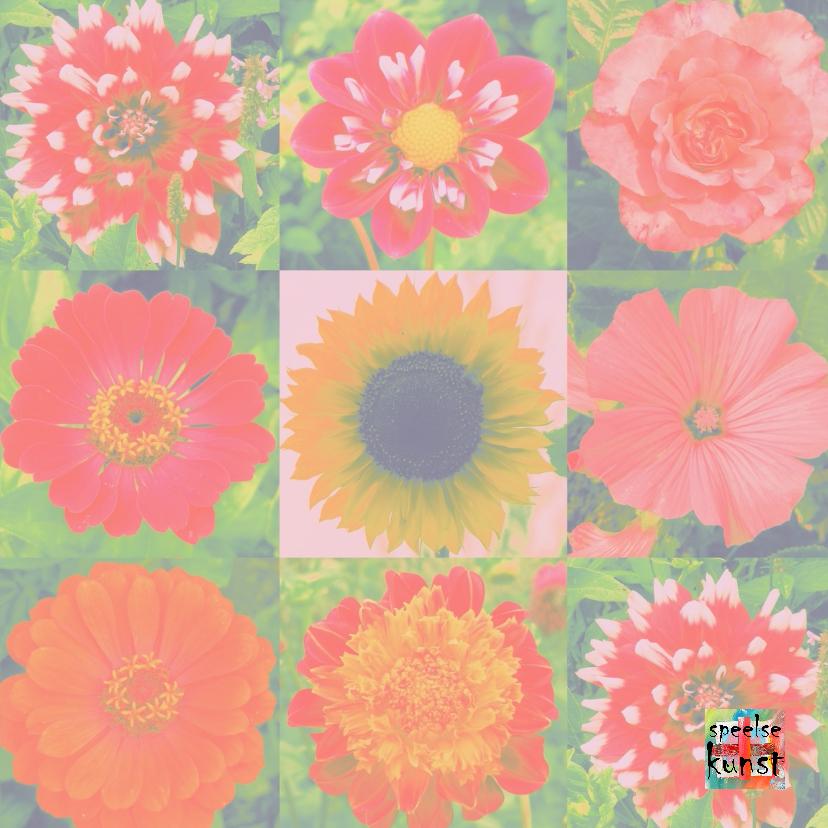 Verjaardag vrolijke bloemen IW  3