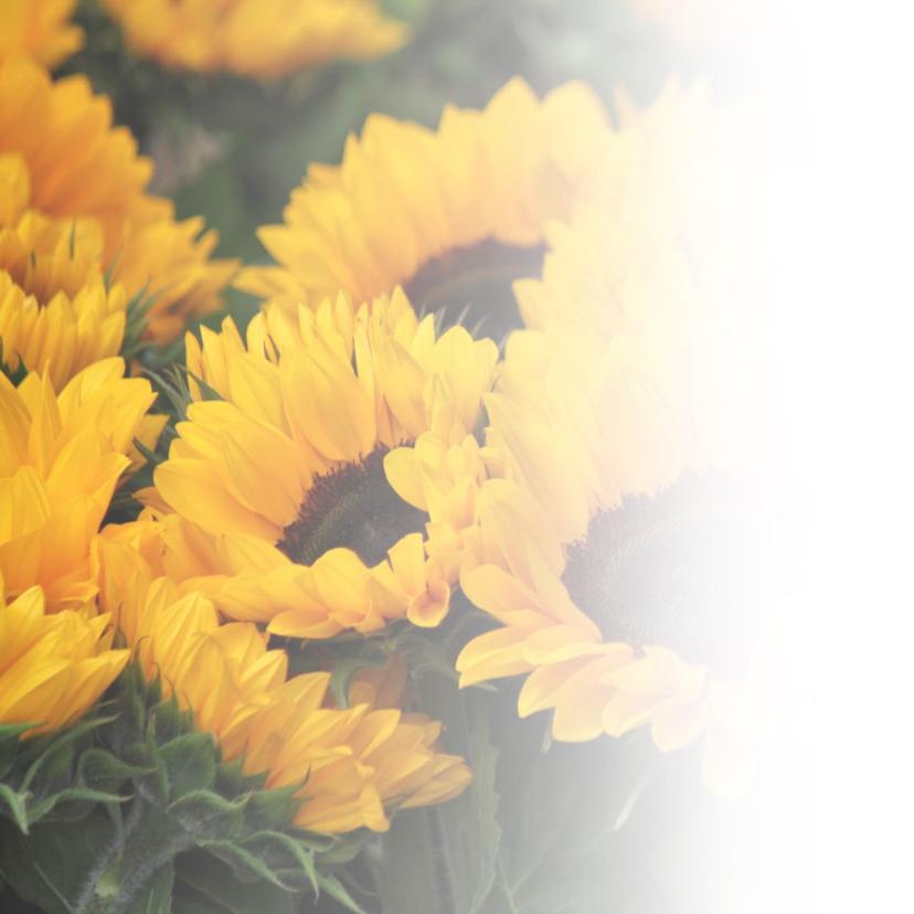 Verjaardag - zomerse zonnebloemen  2