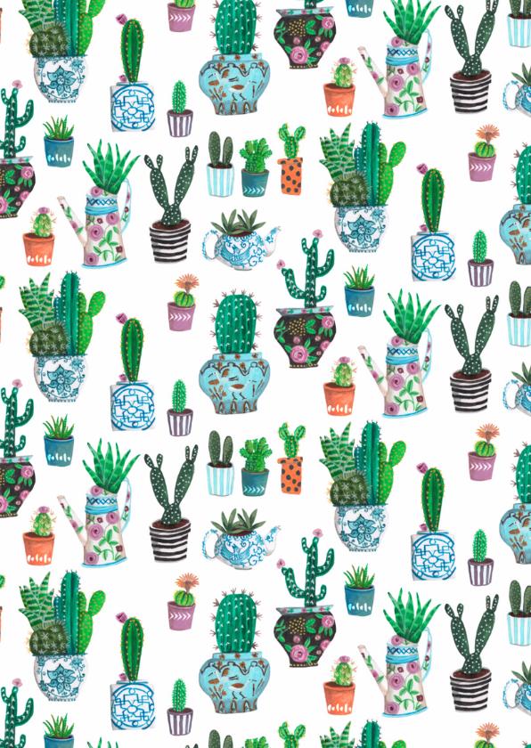 Verjaardagsfeest Cactus Jarig 2