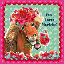 verjaardagskaart paard verjaardagskaart hip paard zeegroen roze | Kaartje2go verjaardagskaart paard
