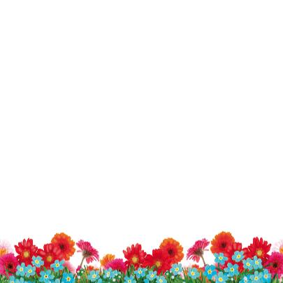 Verjaardagskaart hippe struisvogel blauw 3