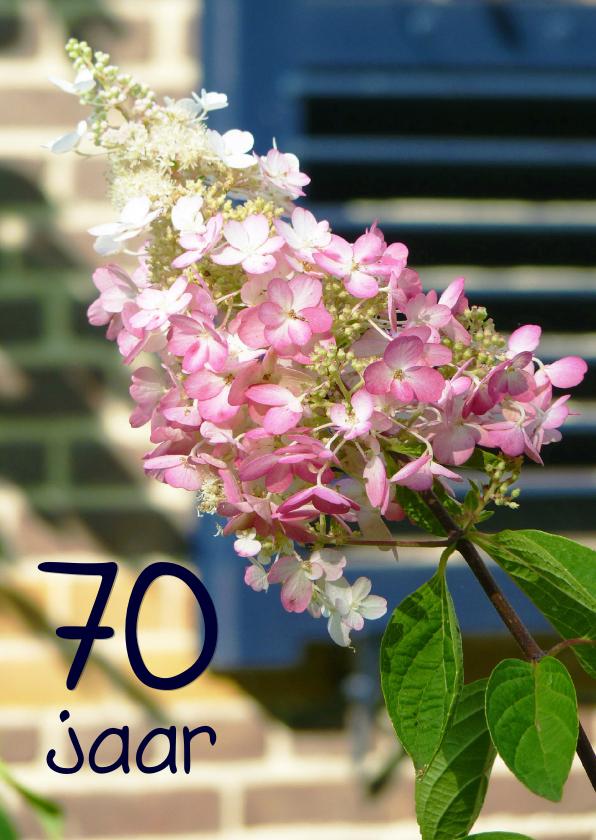 verjaardagskaart 70 jaar Verjaardagskaart Hortensia 70 jaar | Kaartje2go verjaardagskaart 70 jaar