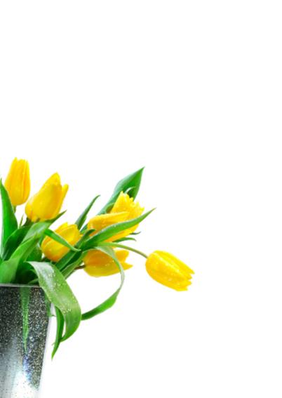 Verjaardagskaart met gele tulpen 55 jaar 2