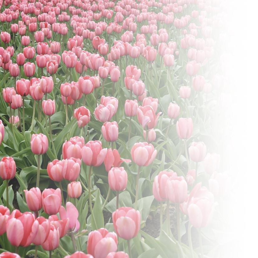 Verjaardagskaart tulpen en naam 2