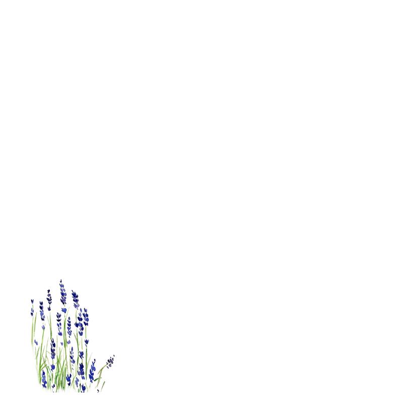 Verjaardagskaart vogels in schaaltje met lavendel en bloemen 2