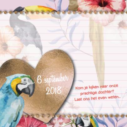 Vintage geboortekaartje papegaai 2