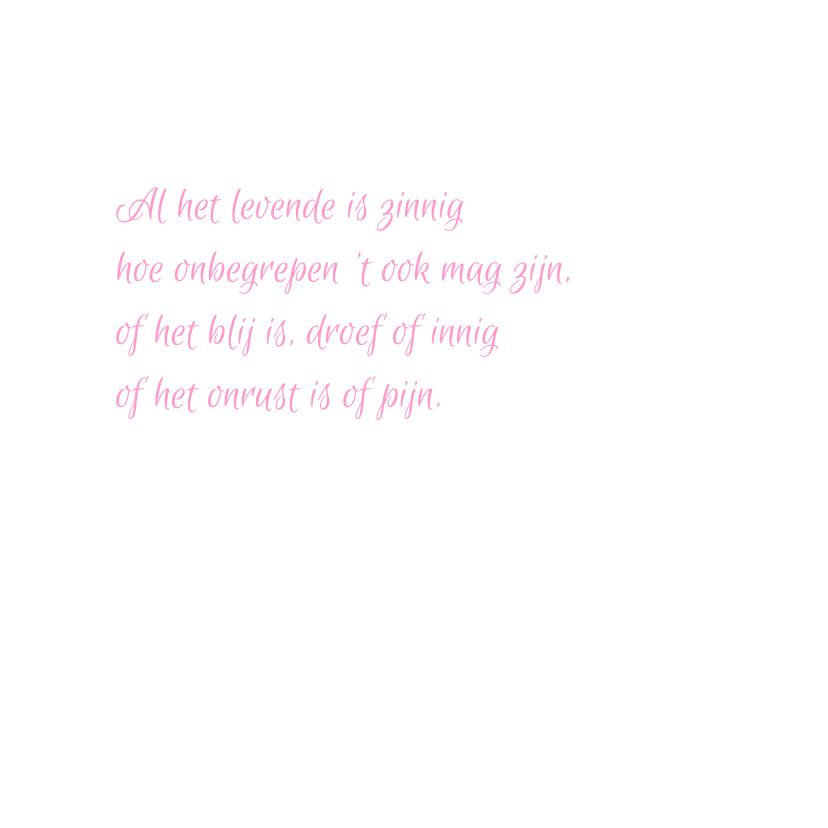 vlinder roze condoleancekaart 3