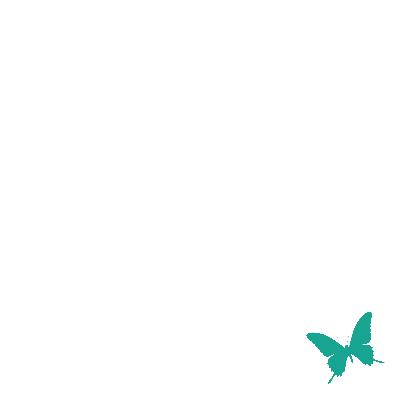 Vlinders grijs en groen 3