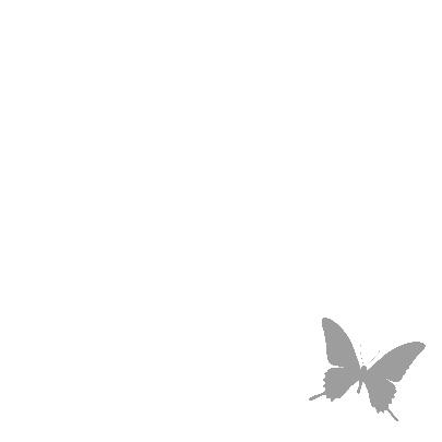Vlinders roze met grijs 3