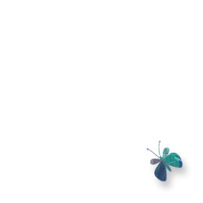 vlindertjes1 3