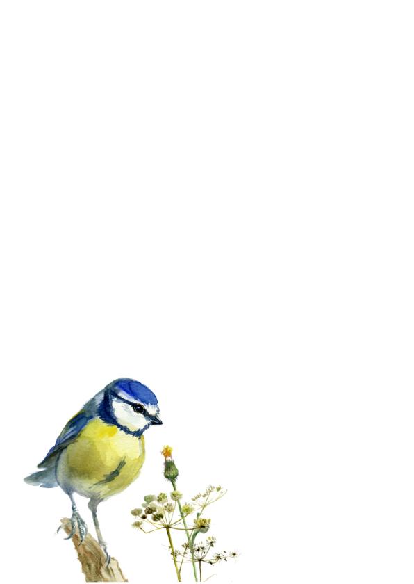 Vogel met lampionnetjes 2
