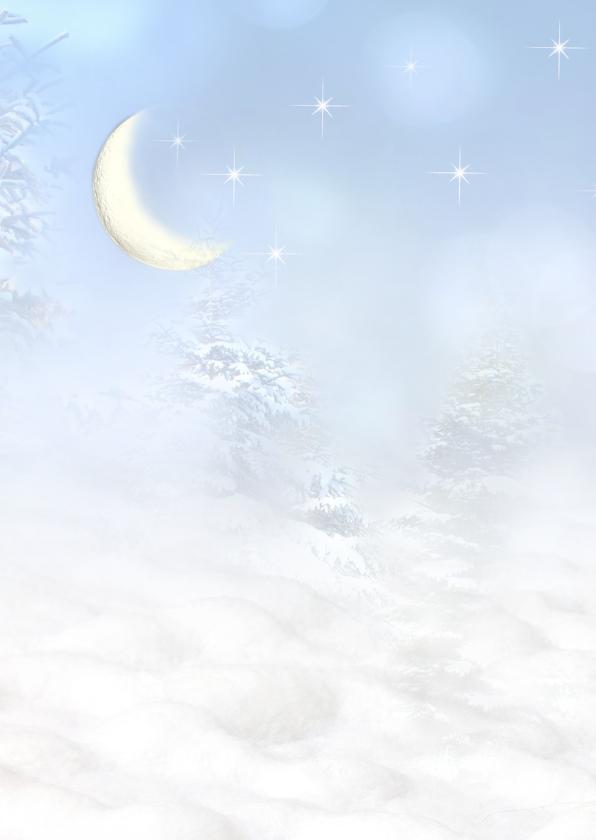 Vogelhuisje in de sneeuw -staand- 2