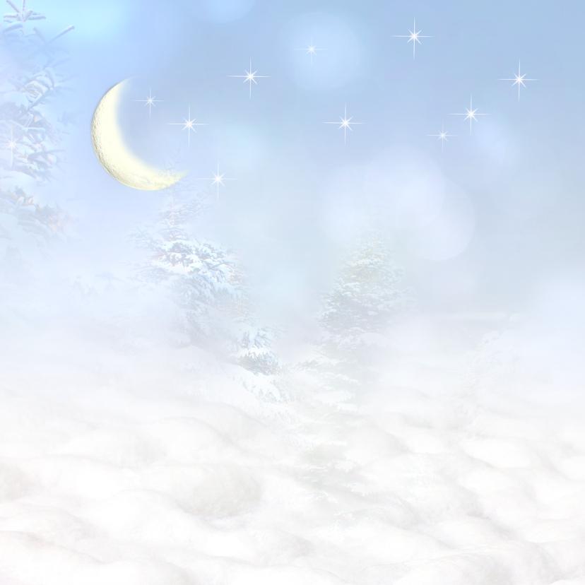 Vogelhuisje in de sneeuw 2