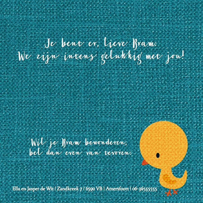 Vogeltje geel op blauw jongen 3