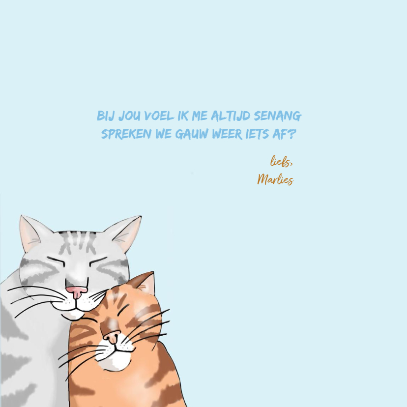Vriendschap - twee katten voor jou 3