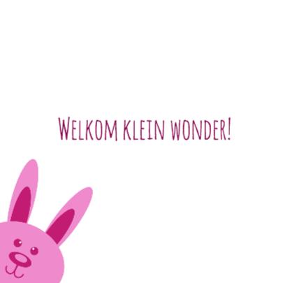 Welkom klein wonder - DH 2