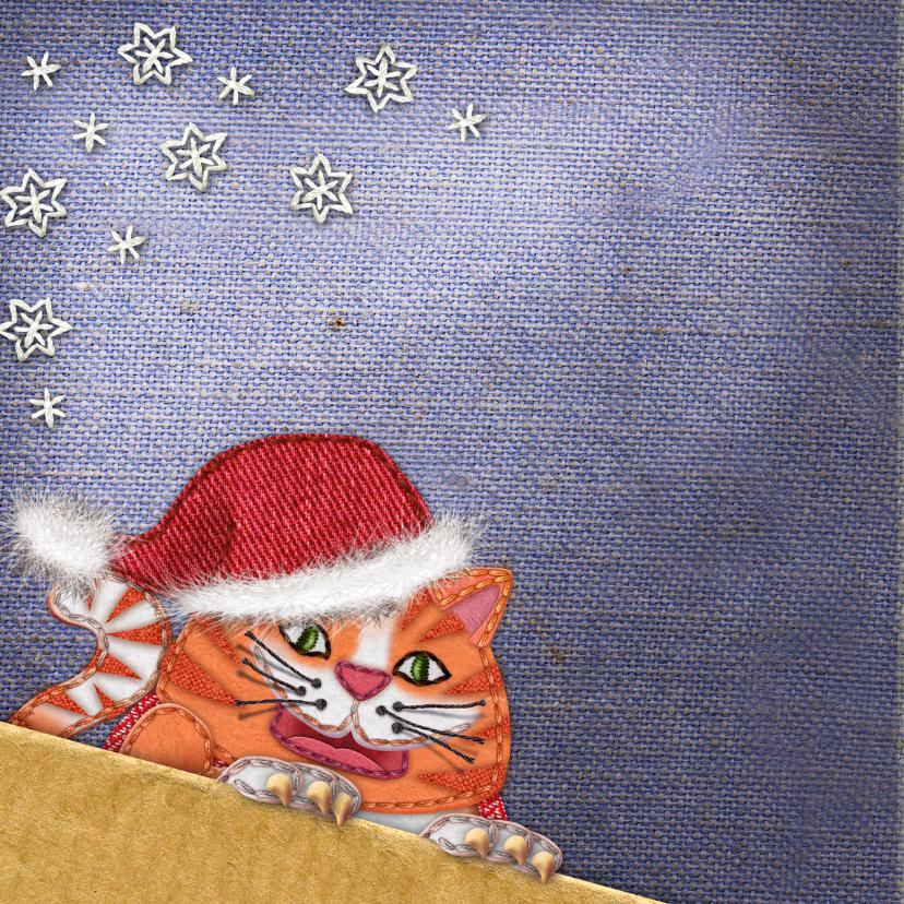 YVON kerst poes kerstmuts ster 2