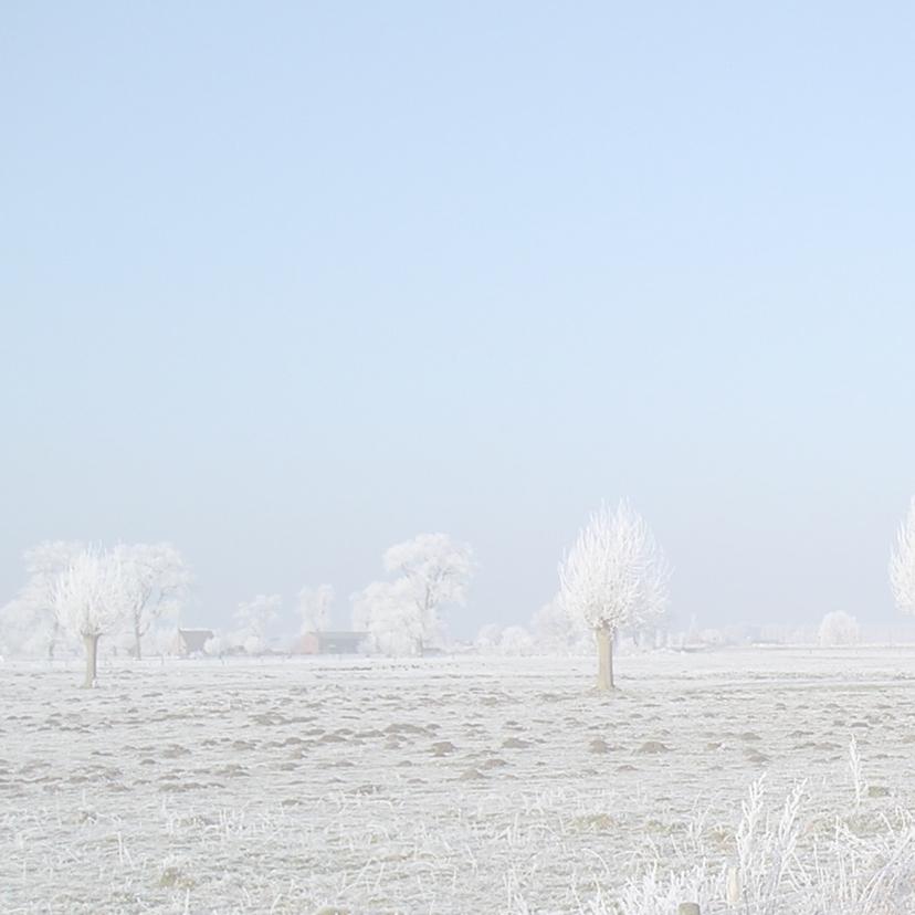 Zeeuwse kerstkaart winter 2