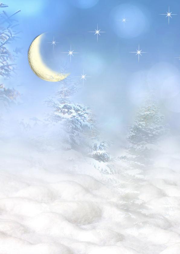 Zingende roodborst in de sneeuw 2