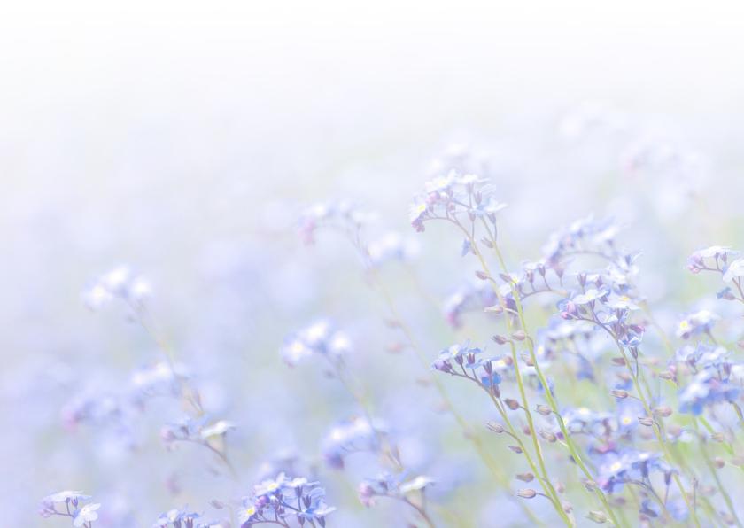 Zomaar kaart veld bloemen 3