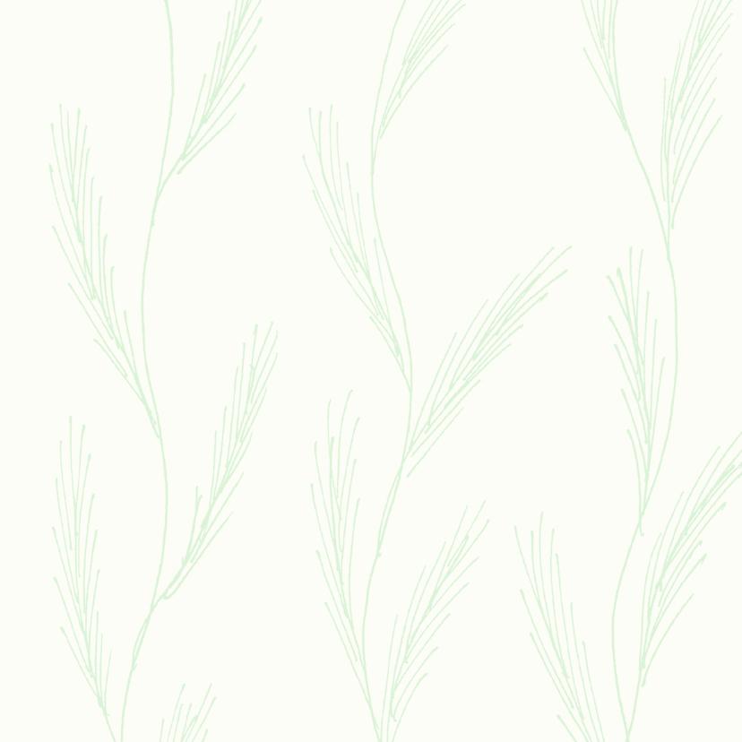 Zomaar kaarten - Gatenplant 3