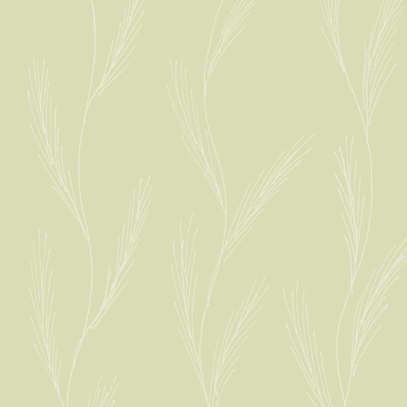 Zomaar kaarten - Tropische blad 3