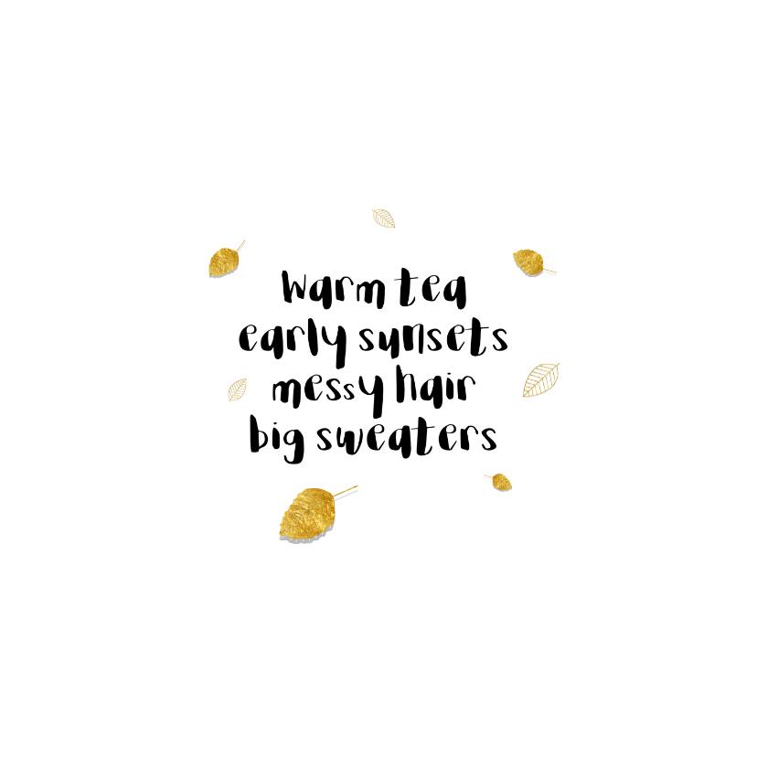 Zomaar kaartje  Kat met vallende bladeren - SD 2