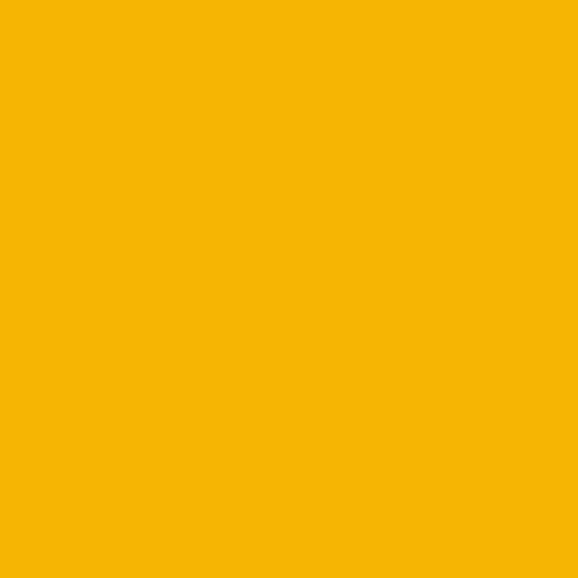 Zonnebloem uit frankrijk 2