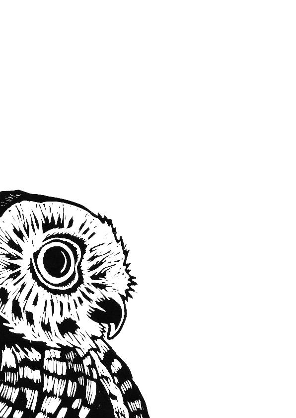 Zwart-wit woonkaart uil 2